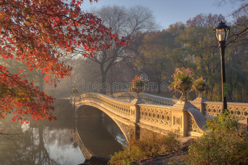 Central Park in autumn. Early morning in the fog in Central Park New York City by the bow bridge stock photo