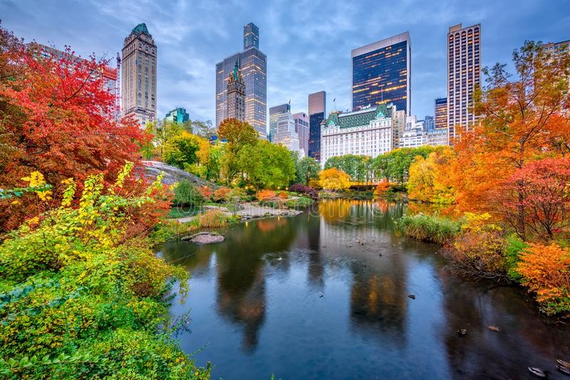 Central Park Autumn. Central Park during autumn in New york City royalty free stock images