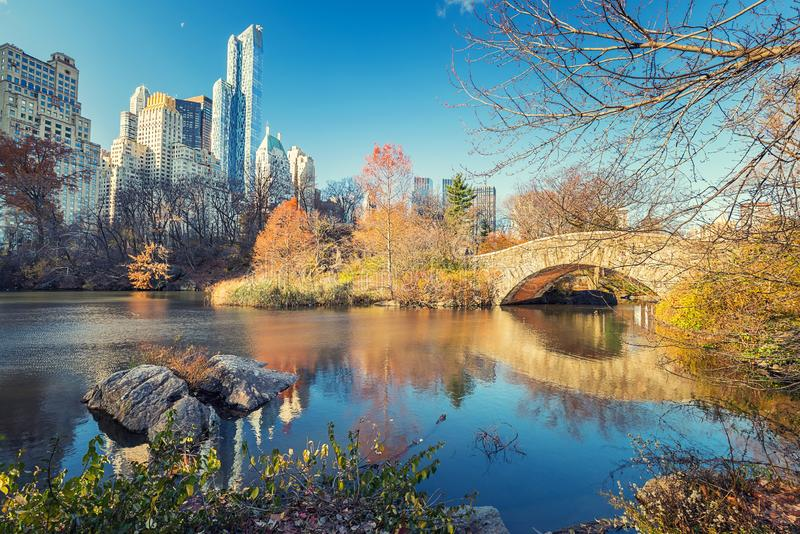 Central park at autumn morning stock photo