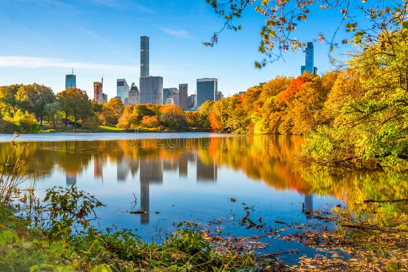 Central Park during autumn in New York City royalty free stock photography