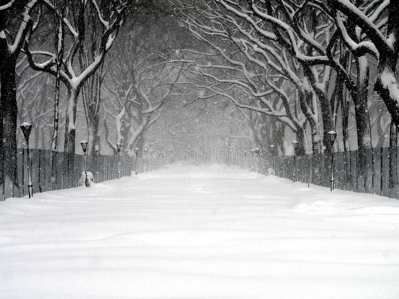 Central Park Blizzard 03 royalty free stock images