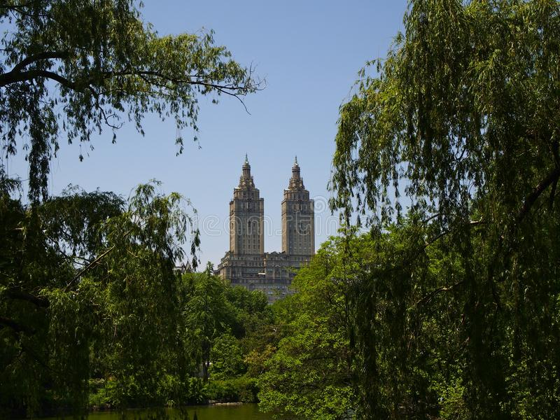Central Park. In New York royalty free stock image