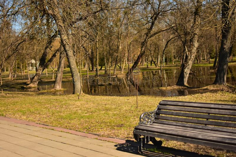 Central Park in the city in early spring wet after rain in sunny day stock photography
