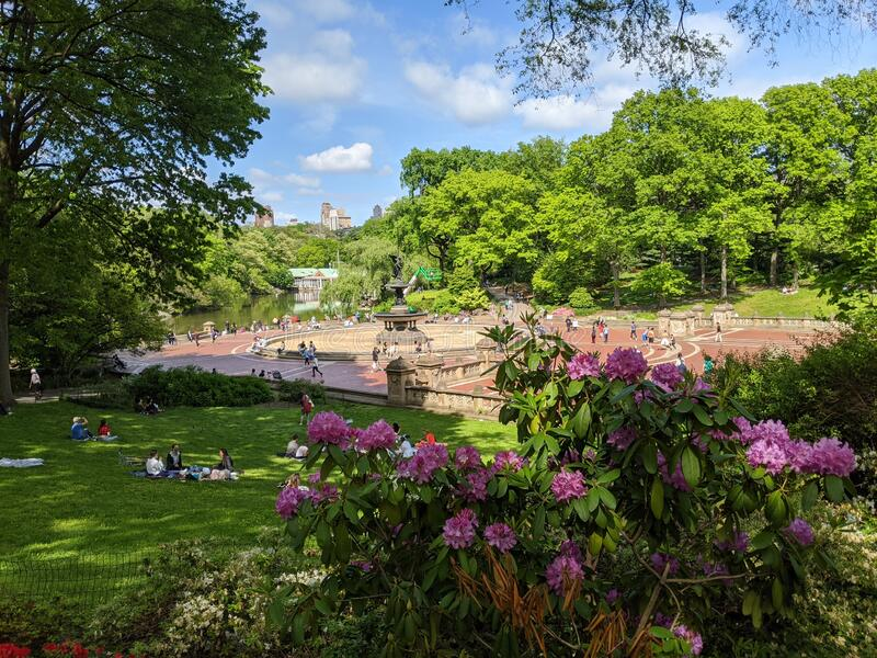Central Park during Covid time royalty free stock images