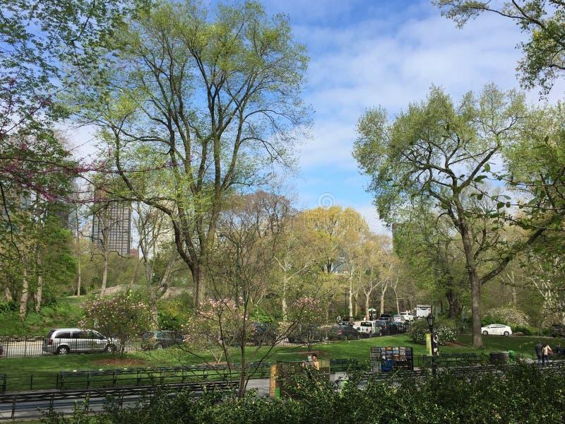 Central Park de 6ème avenue images libres de droits