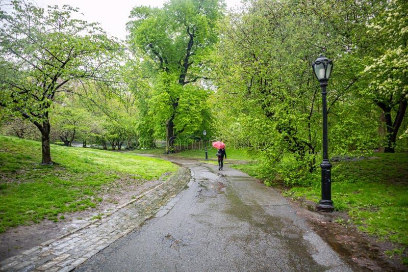 Central Park, de Stad van New York Vrouw die op een weg lopen die een paraplu houden royalty-vrije stock foto's