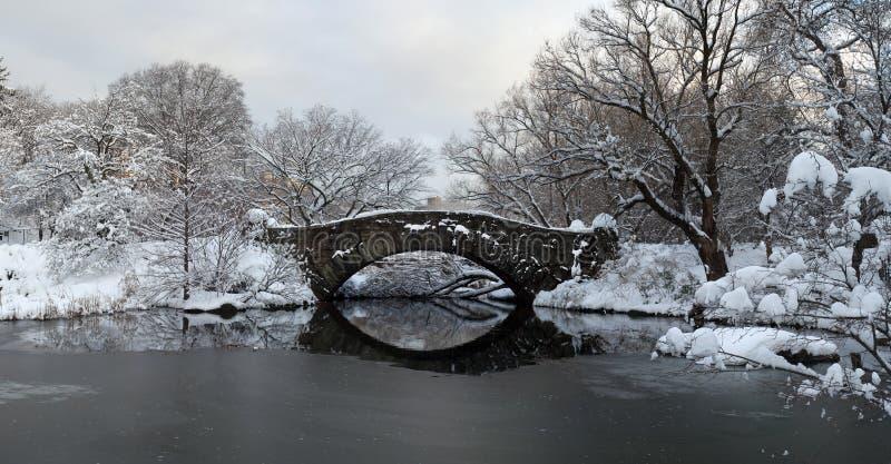 Central Park in de Winter royalty-vrije stock afbeelding