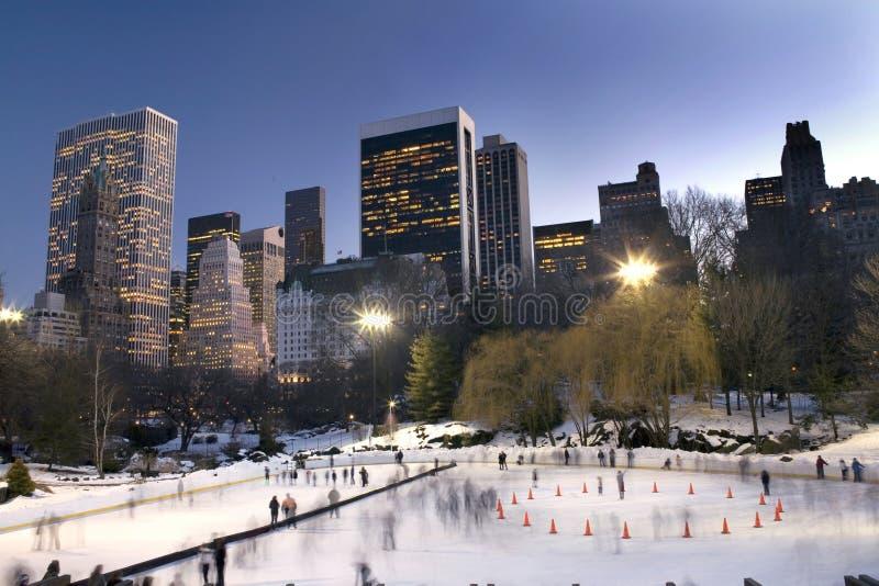 Central Park in de winter royalty-vrije stock foto's