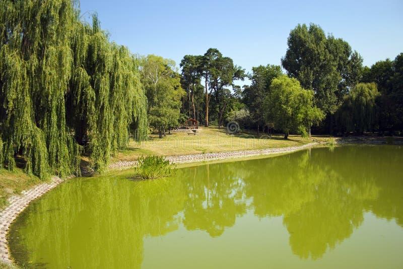 Central park of Debrecen city, Hungary royalty free stock photo