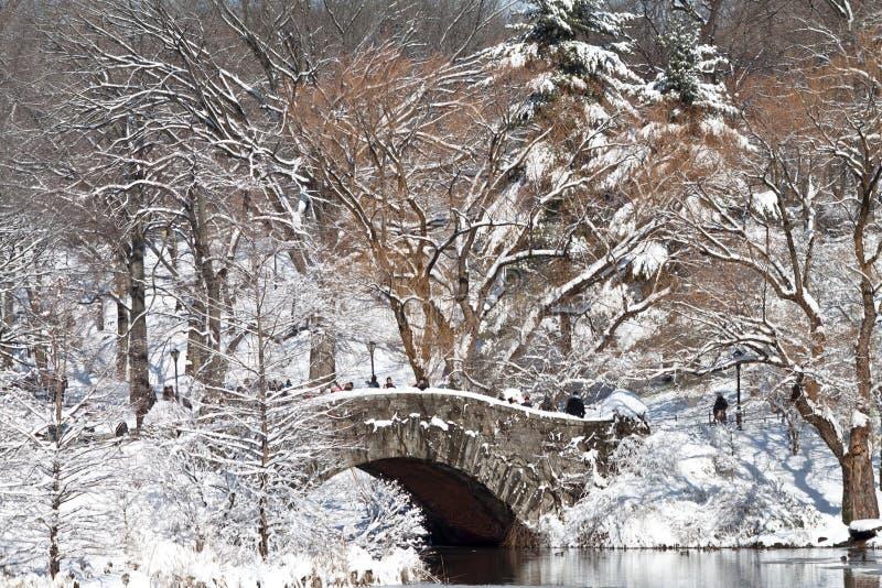 Central Park di New York Manhattan nell'inverno con il ponte sopra il lago con neve fotografia stock