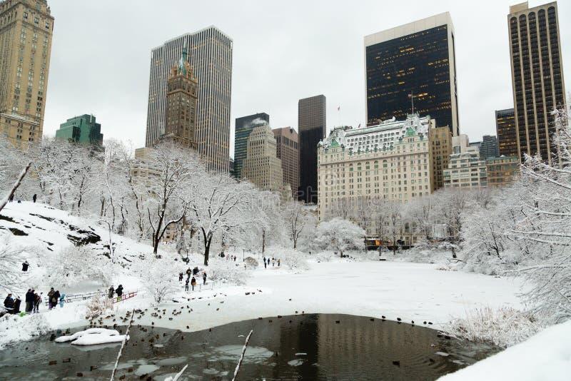 Central Park di New York in neve fotografia stock libera da diritti