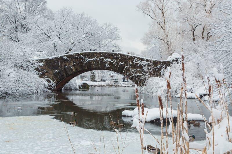 Central Park di New York in ponte della neve fotografia stock
