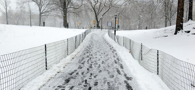Central Park durante o meio da tempestade de neve com a neve que cai em New York City foto de stock