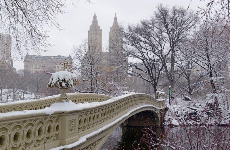 Central Park durante o meio da tempestade de neve com a neve que cai em New York City imagem de stock