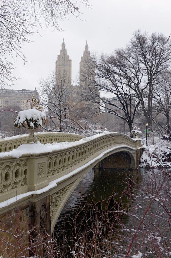 Central Park durante o meio da tempestade de neve com a neve que cai em New York City fotografia de stock
