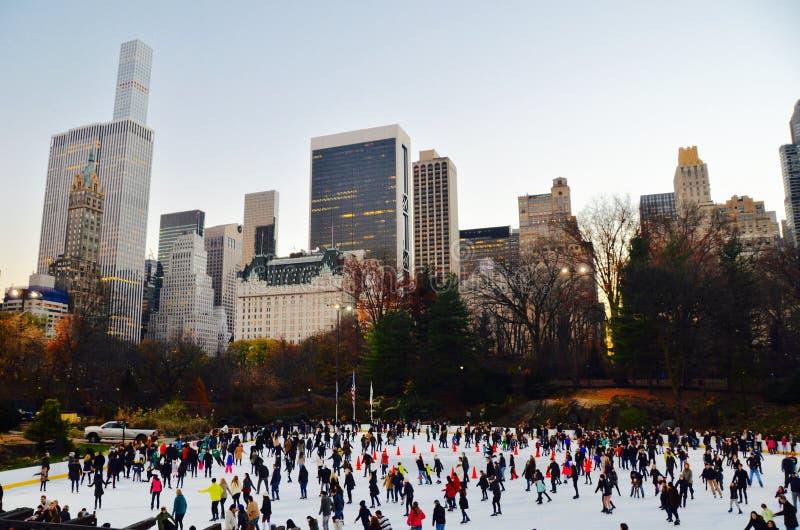 Central Park en el invierno, New York City foto de archivo libre de regalías