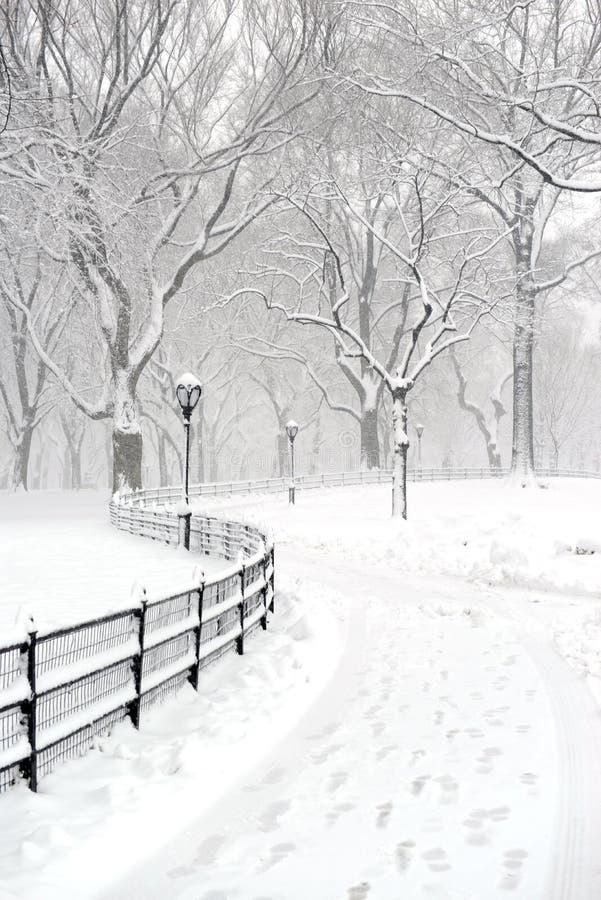 Central Park en la nieve después de la nevada, New York City imágenes de archivo libres de regalías