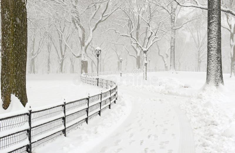 Central Park en la nieve después de la nevada, New York City fotos de archivo libres de regalías