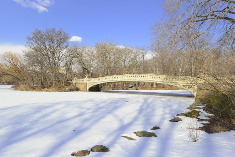 Central Park en la nieve, Nueva York fotos de archivo libres de regalías