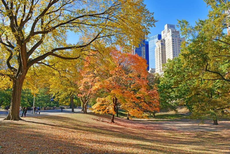 Central Park en otoño, Nueva York imagen de archivo
