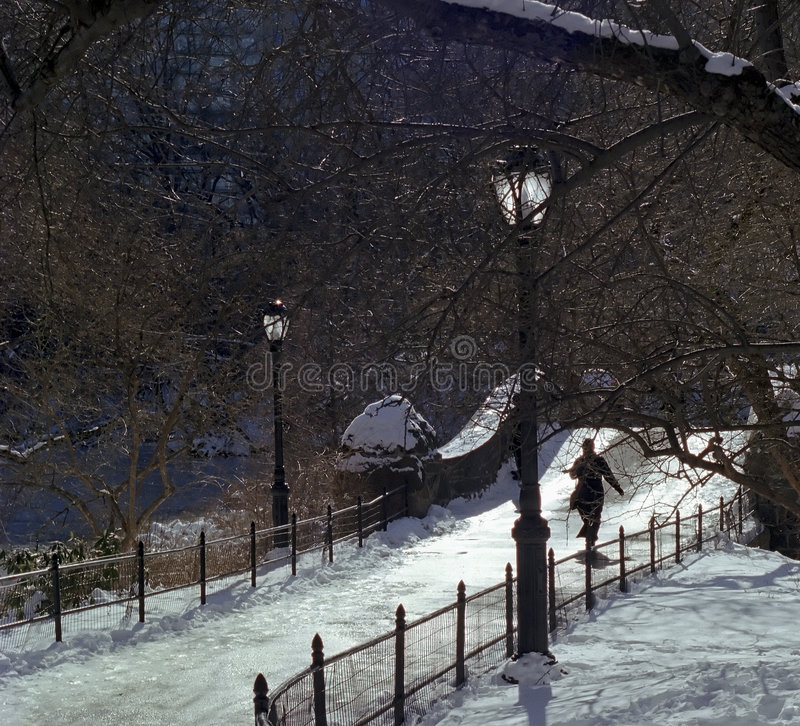 Central Park går vinter arkivbild