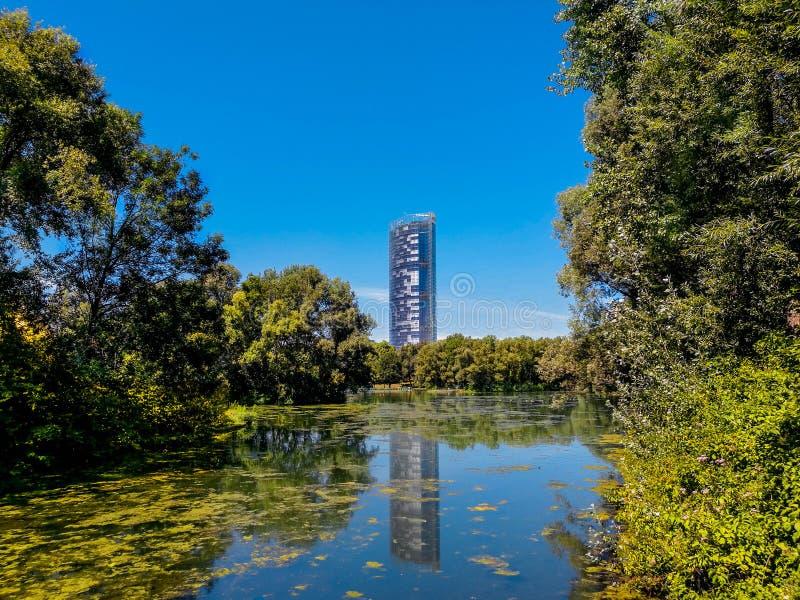Central Park-Herbst und Gebäudereflexion über dem See in Rheinaue-Park in der Stadt von Bonn lizenzfreie stockbilder