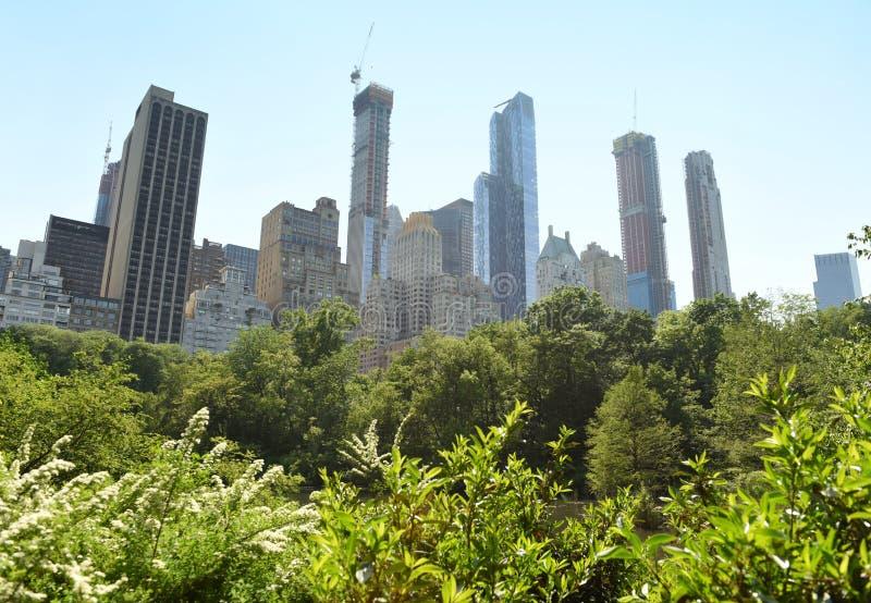 Central Park i drapacze chmur w Nowy Jork fotografia royalty free