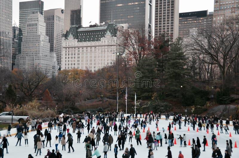Central Park i vintern, New York City arkivbilder