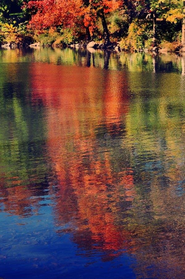 Central Park im Fall stockbild