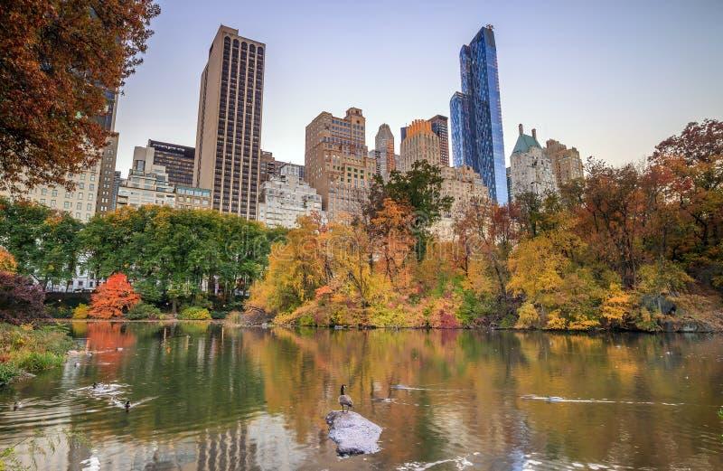 Central Park im Herbst stockfotografie