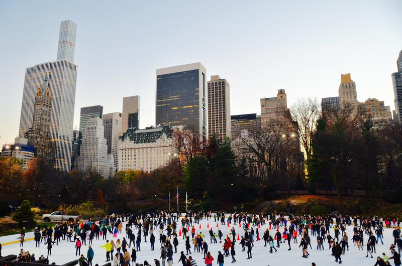 Central Park im Winter, New York City lizenzfreies stockfoto