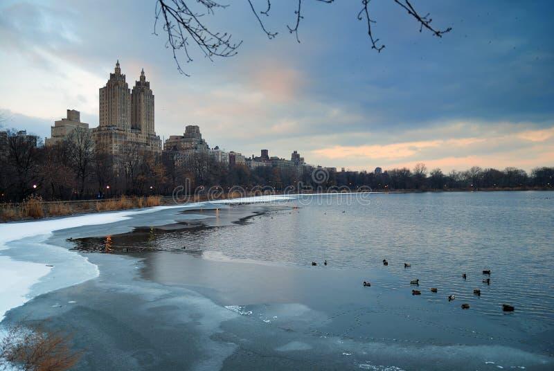 Central Park in inverno, New York City immagine stock libera da diritti