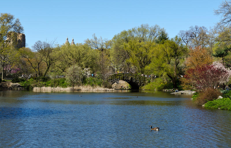 Download Central Park Lake Editorial Photo - Image: 25048941