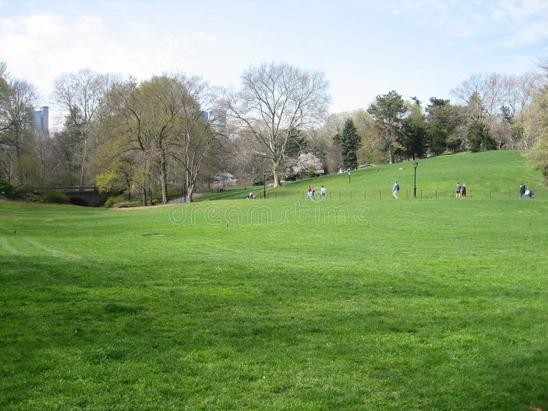 Central Park Lawn stock photo