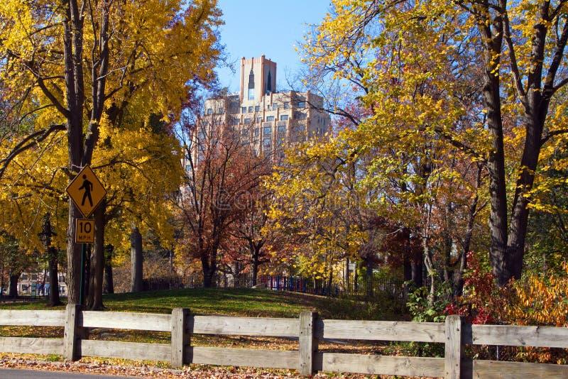 Central Park in Manhattan op een Dalingsdag, NYC stock afbeelding