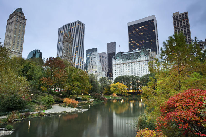 Central Park and Manhattan Skyline. stock images
