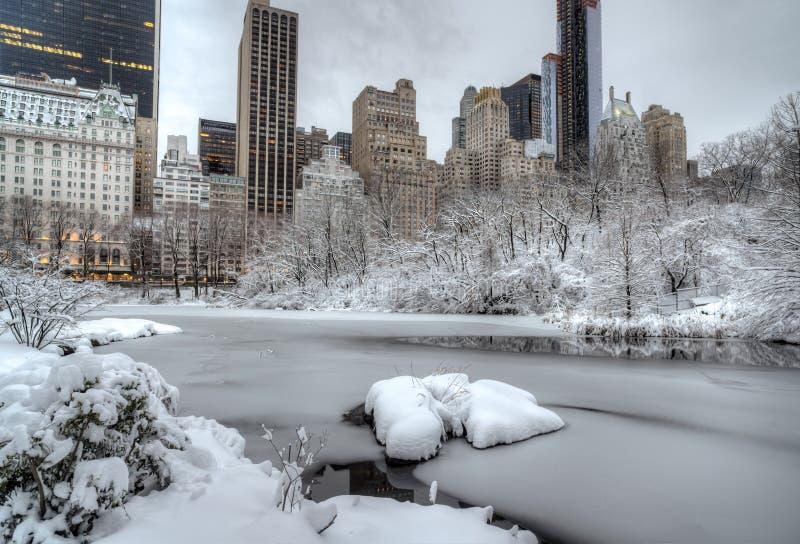 Central Park, Miasto Nowy Jork zima zdjęcie royalty free