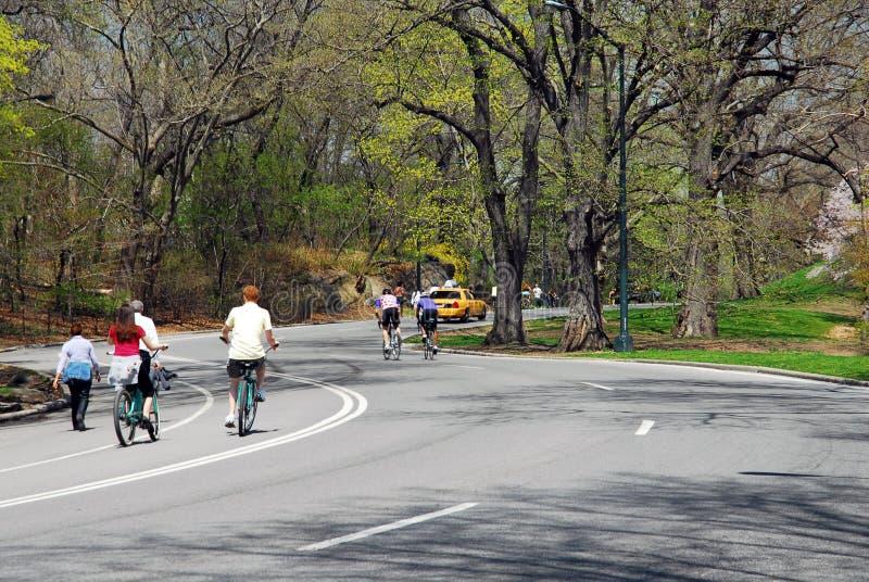Central Park na mola fotografia de stock
