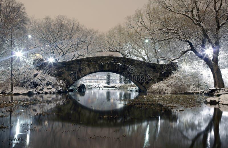 Central Park nachts NYC lizenzfreie stockfotografie