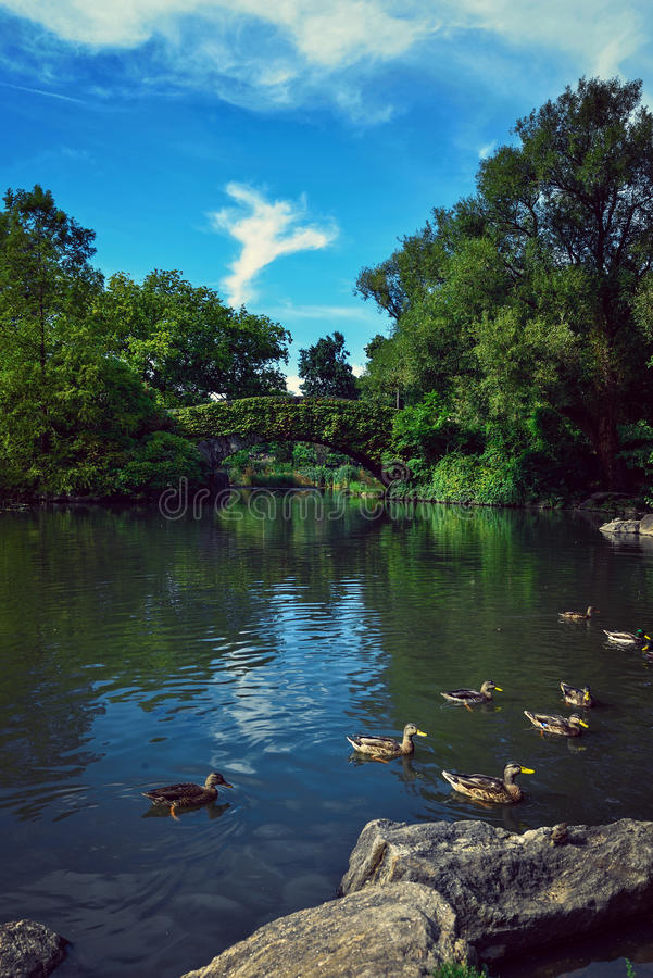 Central Park New York immagine stock