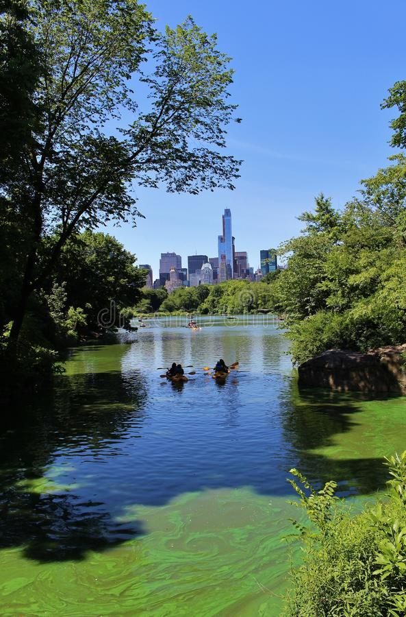 Download Central Park, New York redactionele stock foto. Afbeelding bestaande uit recreatie - 54080853