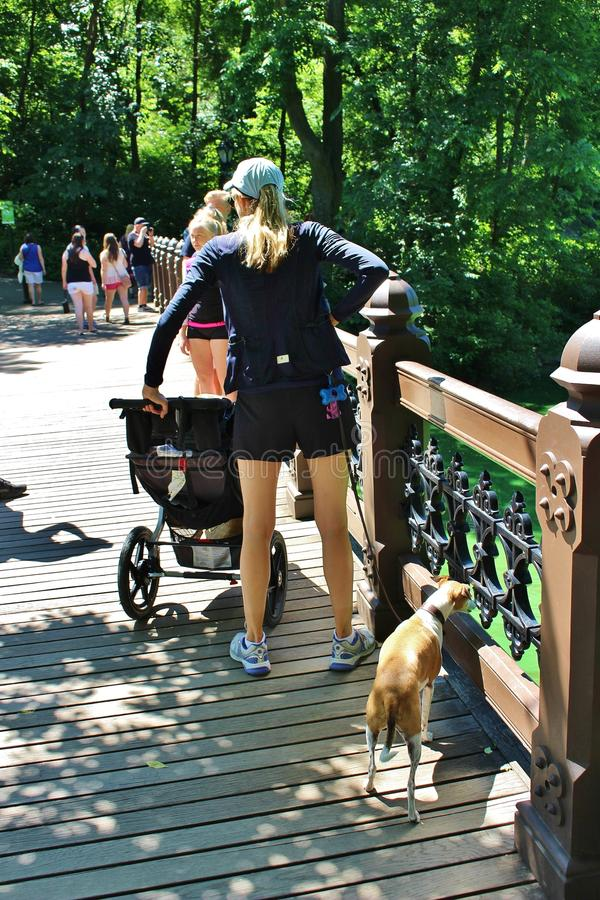 Download Central Park, New York redactionele stock foto. Afbeelding bestaande uit brug - 54081003