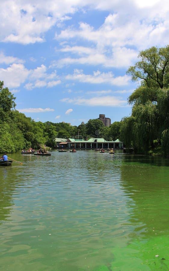 Download Central Park, New York redactionele afbeelding. Afbeelding bestaande uit rozen - 54083335