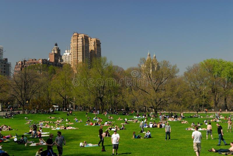 Central Park, New York City imagem de stock royalty free