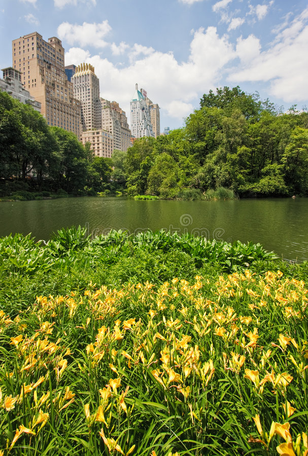 Central Park and New York City royalty free stock photos