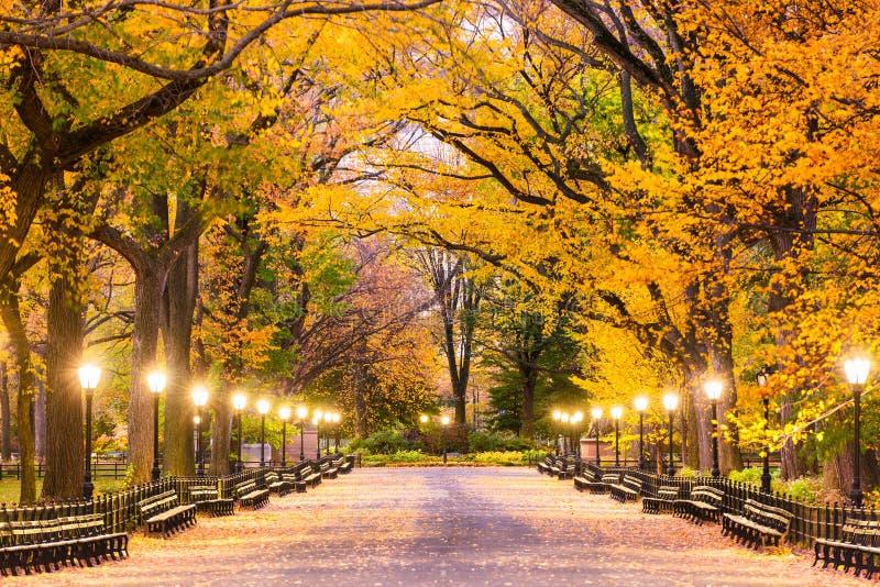 Central Park in New York City lizenzfreie stockbilder