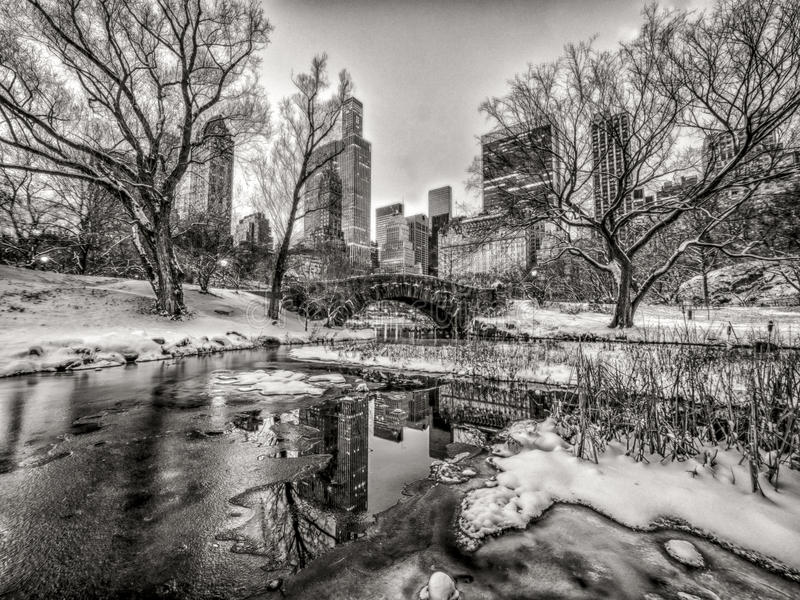 Central Park, New York City fotografia stock