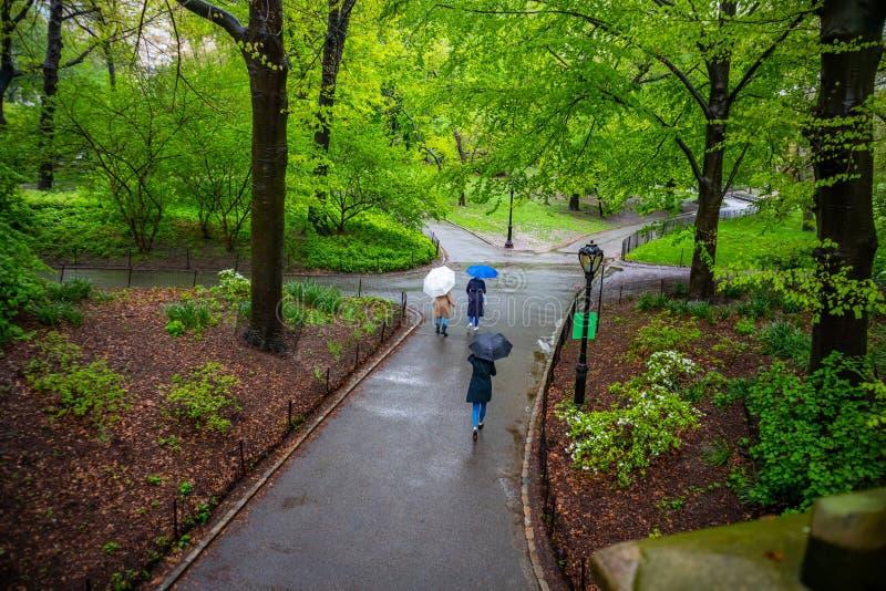 Central Park, New York City Donne che camminano su un percorso che tiene gli ombrelli fotografia stock libera da diritti