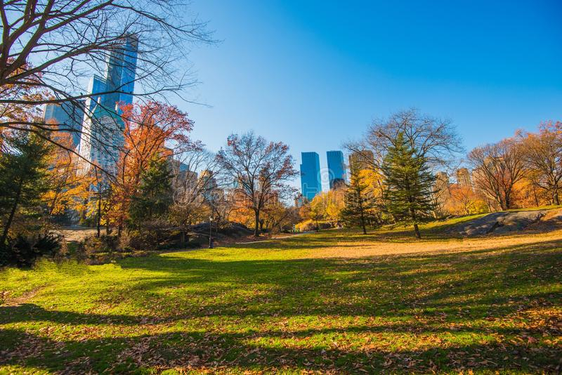 Central Park New York stock photography