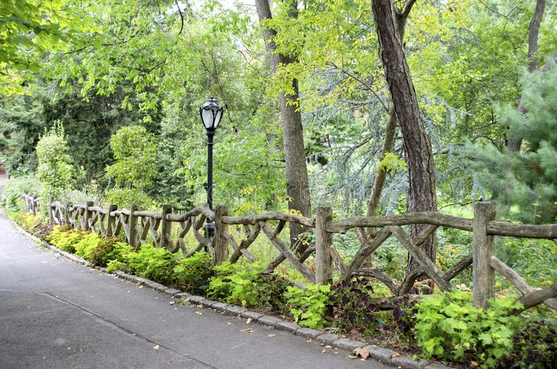 Central Park, New York City. Central Park in New York City is laced with pleasant paths for quiet walks stock images